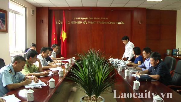 Đoàn công tácTổng cục Thủy sản (Bộ NN&PTNT) vàcác ngành chức năng của tỉnh Lào Caibàn giải pháp để kiểm soát, ngăn chặn tôm càng đỏ vào địa bàn tỉnh.