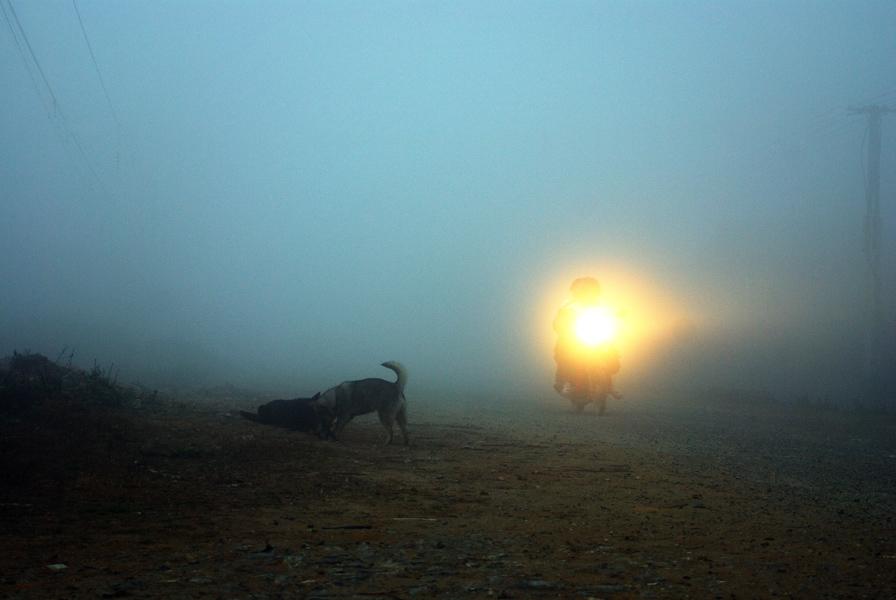 Ngày mới đã bắt đầu khi trời còn mờ hơi sương