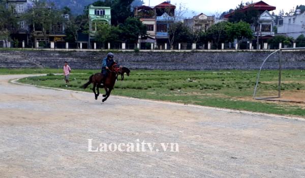 Các kỵ sỹ cùng với chú ngựa của mình dành nhiều thời gian tích cực luyện tập các kỹ thuật và chiến thuật