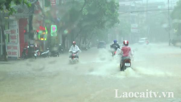Ngày và đêm 24/5, thời tiết các địa phương vẫn có mưa, mưa rào đều khắp và dông rải rác.