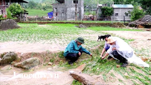 Trận lũ xảy ra vào rạng sáng 24/6 đã ảnh hưởng lớn đến sinh hoạt và sản xuất của bà con xã Bản Hồ