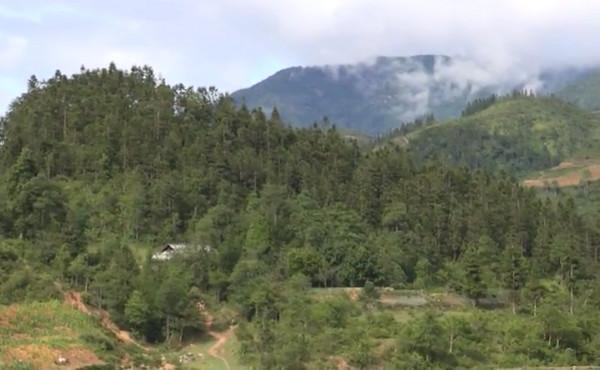 Người dân cần tăng cường công tác phòng cháy, chữa cháy rừng.